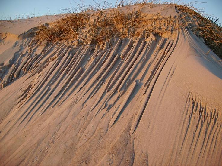 wind'n dunes