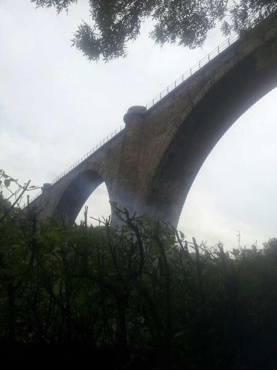 Looking up at the Victoria Viaduct on a walk out after dinner.