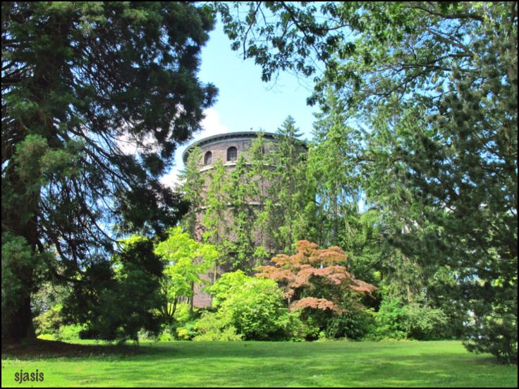 Volunteer Park, Seattle, A beautiful park, with great views and the conservatory. The former art museum, now the Asian art museum. The surrounding neighborhood