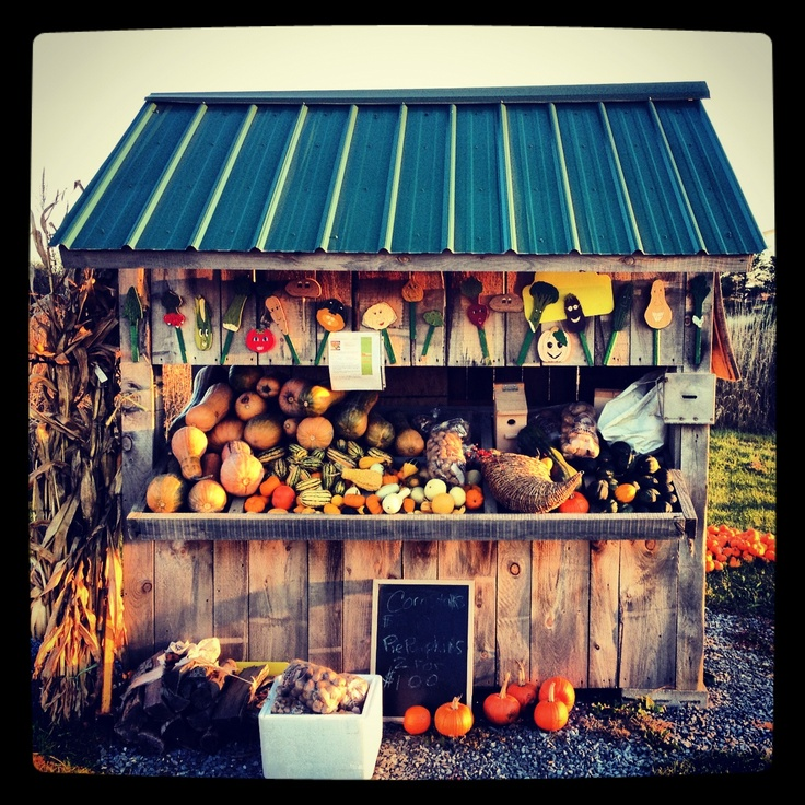 My favorite farm stand in Charlotte, Vermont...
