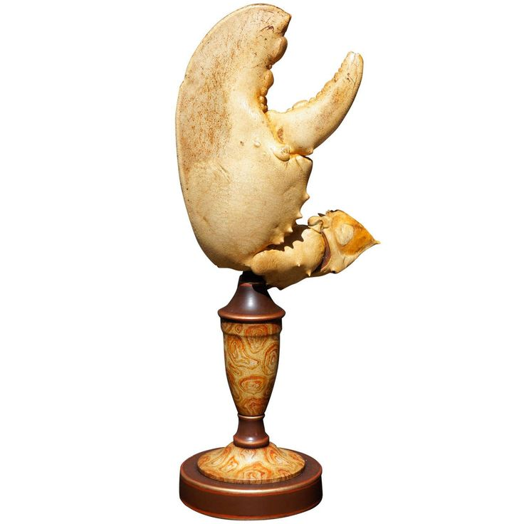 A Large Specimen Lobster Claw On Tole Pedestal | early 20th c.