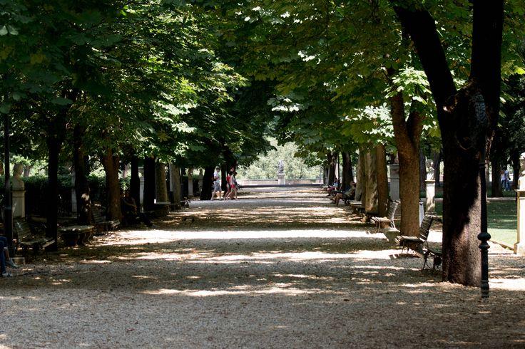 Pelas Ruas de Roma
