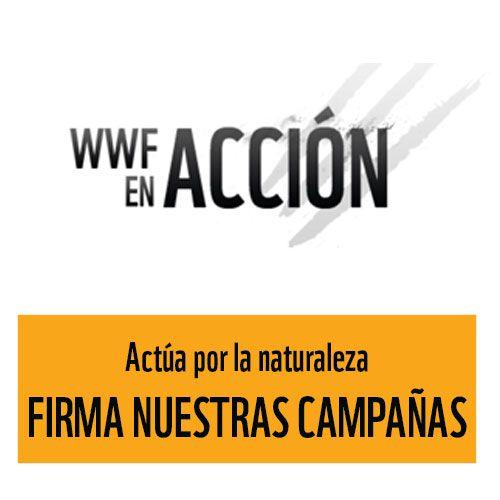 WWF España - Home