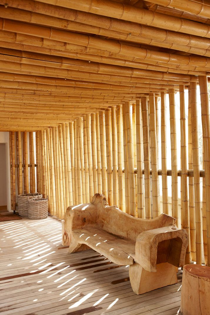 Wooden benchConcrete Architecture, Wooden Benches, Bamboo, Outdoor Seats, Sun Porches, Seats Area, South Africa, Blog, Spa