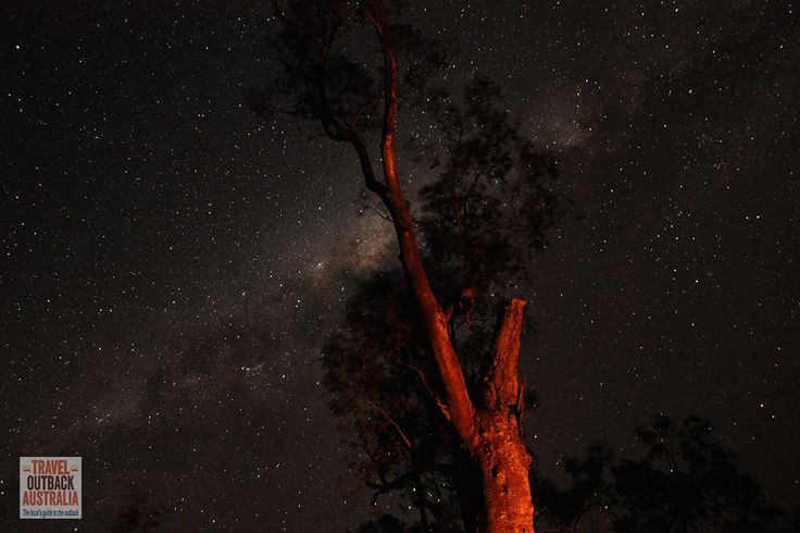Stunning photograph of the fabulous night sky in #outback #Australia. We went camping on this SECRET national park: http://traveloutbackaustralia.com/owen-springs-reserve.html/