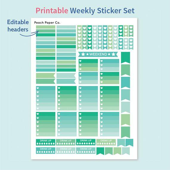 ... Planner Weekly Kit / EC Planner / Printable Planner Stickers / Peach