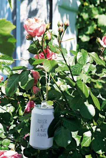 Etiquette de jardin faite avec une canette peinte en blanc et accrochée avec un fil par la languette