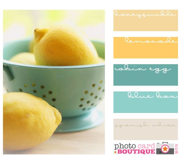Yellow and robin egg blue