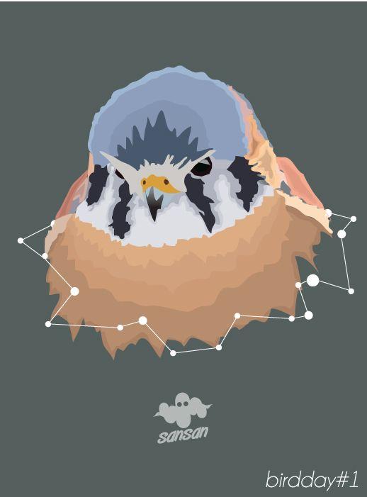 Digital Art | Illustration | Vector | Bird | Fun | Concept