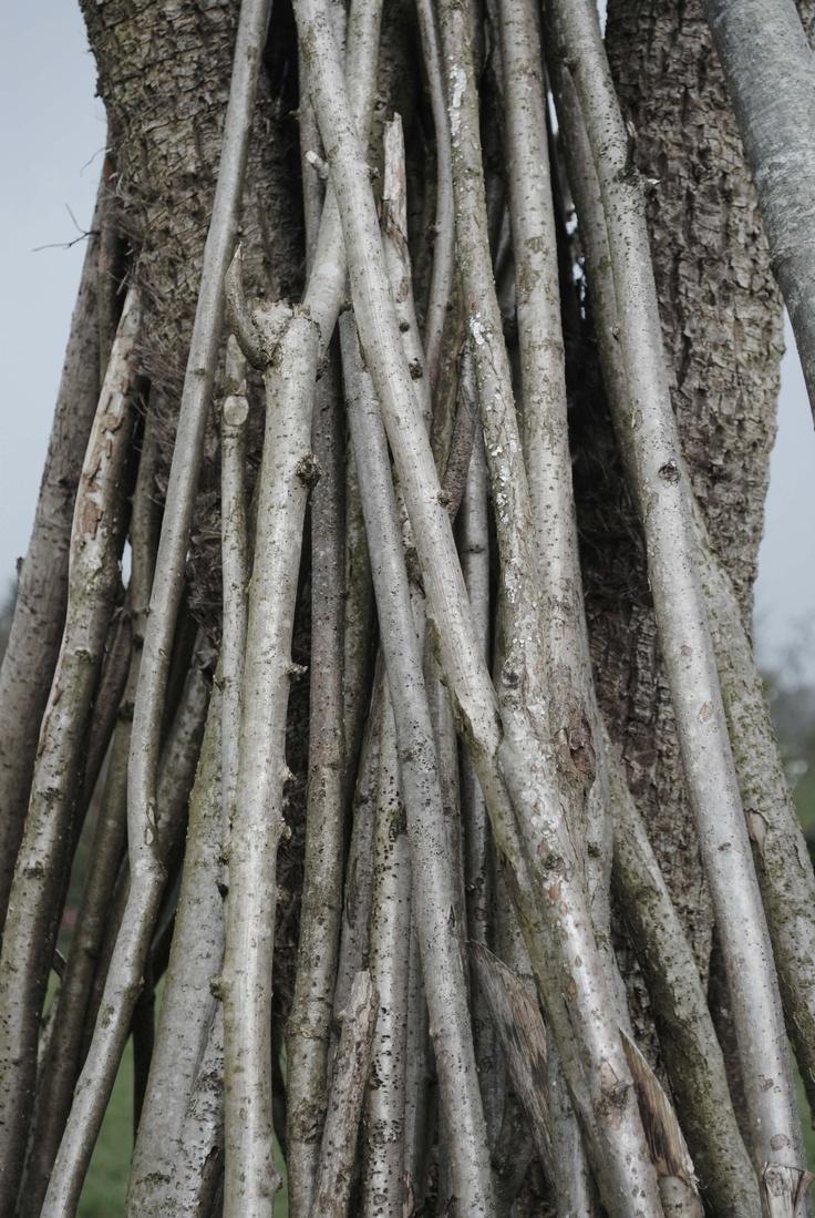 An artful pile of sticks in Gilly's garden