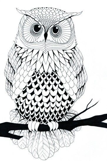 62 best owl coloring pages images on pinterest | coloring books ... - Animal Mandala Coloring Pages Owl