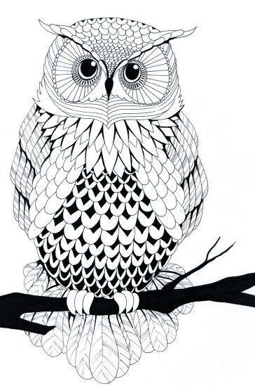 line art drawings - Bing images