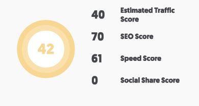 SEO analyzer scores