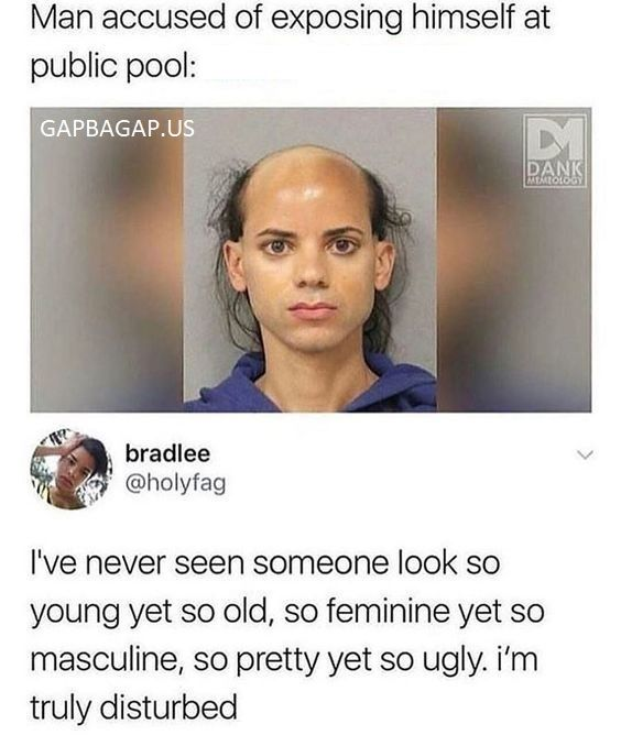 Funny Tweets About A Man vs. Public Pool