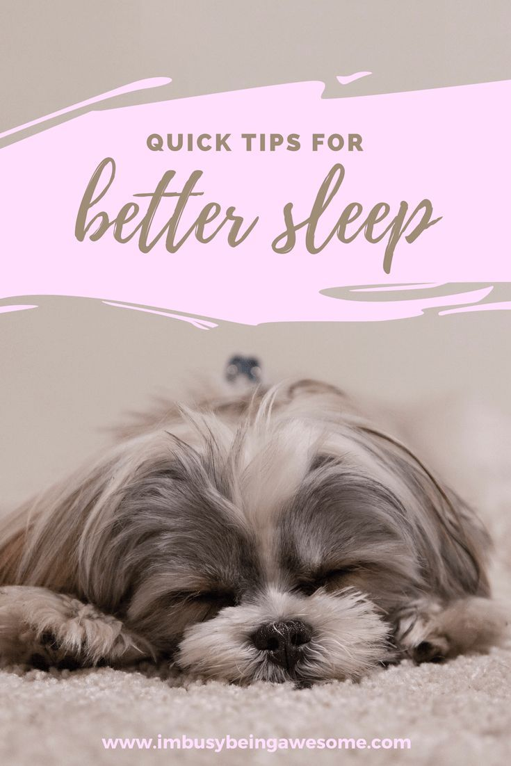 Special Tips Geared Especially To Dog Owners Check Out The