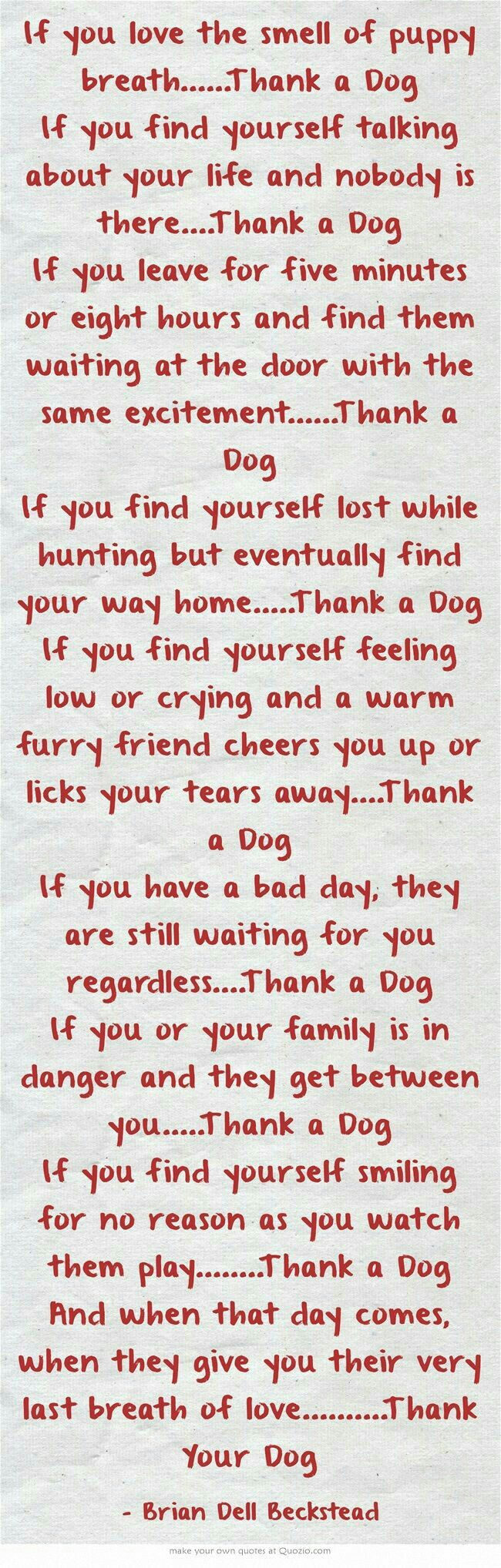 Thank your dog(s)