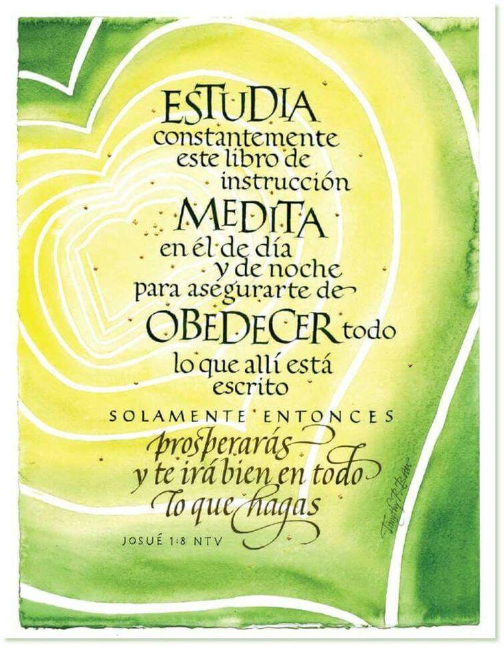 Josué 1:8 (RVR1960) Nunca se apartará de tu boca este libro de la ley, sino que…