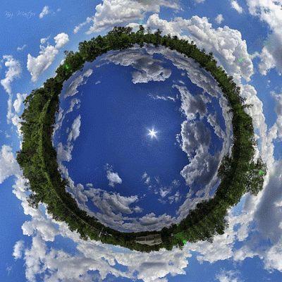 Presente Consciente: Medio Ambiente