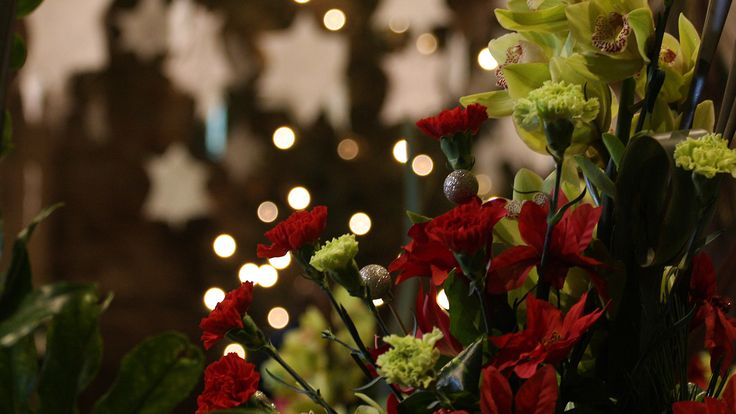 Christmas flower display © James Breslin