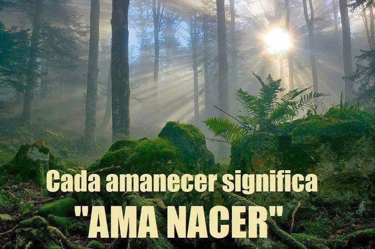 "Cada amanecer significa "" Ama Nacer """