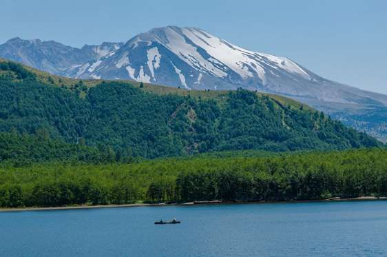 MOUNT ST. HELENS, WASHINGTON, USA Mount St. Helens was active in the early 19th century and had a major eruption on May 18, 1980 which killed 57 people. When eruptions occur volcanic ash, steam, water and debris shoot out. Fatalities have been common and some people are still considered missing.