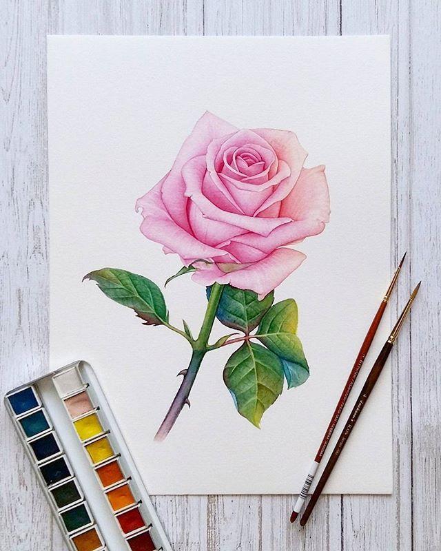 👧 Anna 🎨 Künstlerin (@aniel_ak) • Instagram Fotos und Videos