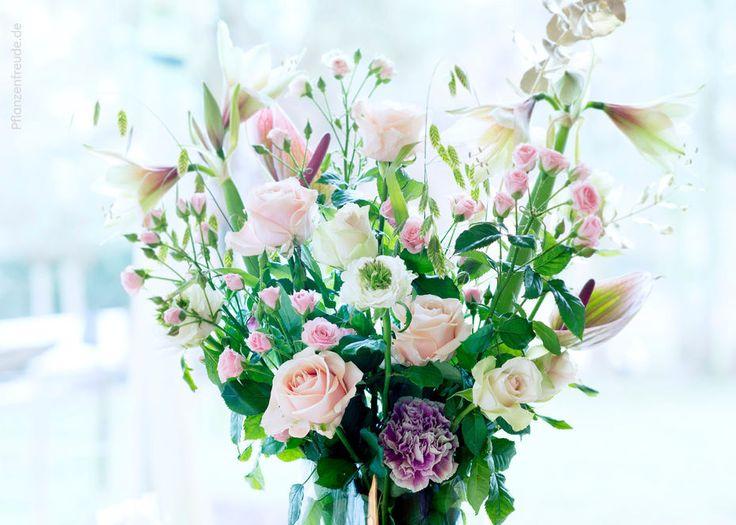 Schnittblumen - Blumen Risse