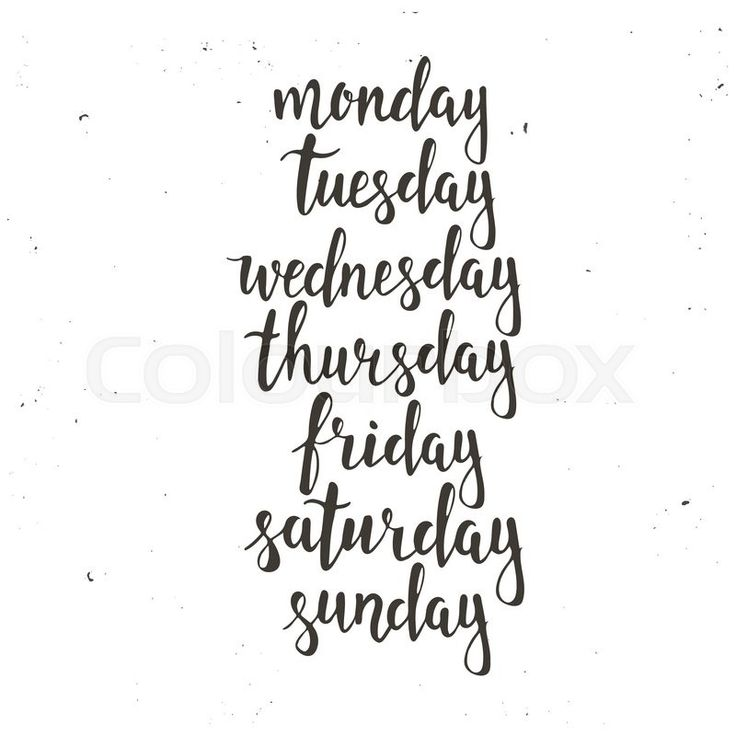 Handwritten days of the week: Monday, Tuesday, Wednesday, Thursday, Friday, Saturday, Sunday. Black ink calligraphy words isolated on white background. Calligraphy. | Vector | Colourbox on Colourbox
