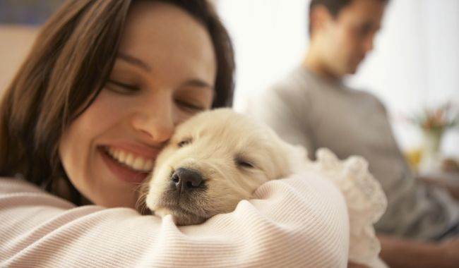 Bringing Home Puppy, The Dos and Dont's