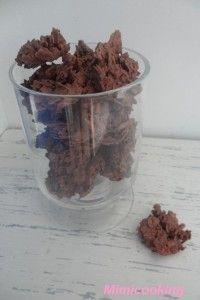 Bonsoir, aujourd'hui je vous propose la recette des roses des sables. Recette: Pour 30 roses des sables: -85g de gavottes (crêpes dentelle) -100g de chocolat au lait -100g de pralinoise -60g de pralin Faire fondre les chocolats au bain marie et réduire...