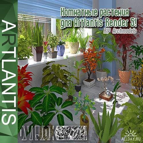 Комнатные HQ растения для Artlantis 5!