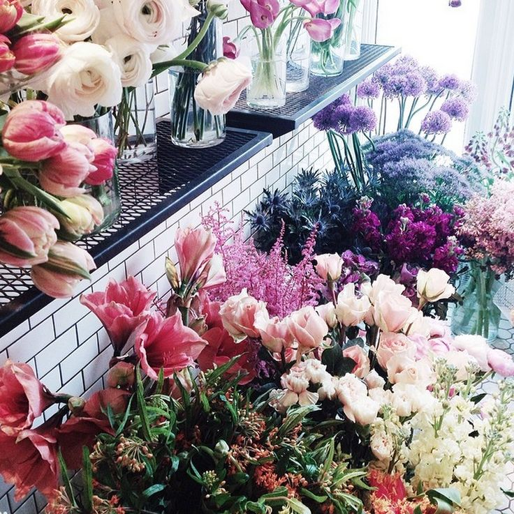 Ugh. If I wasn't allergic to everything I would so work for a flower shop!