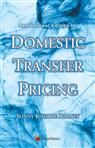 Professional?s Guide to Domestic Transfer Pricing