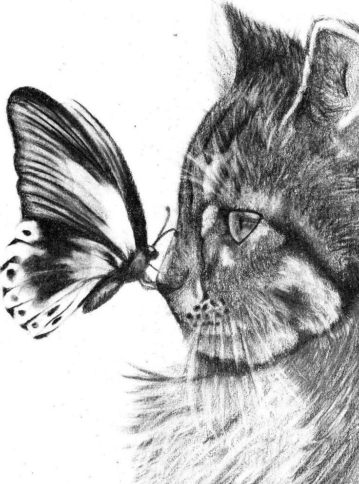 Dibujos A Lapiz De Animales, Dibujos A Lapiz De Amor, Dibujos De Gatos, Dibujos Hechos, Dibujos A Lápiz, Dibujos Pinturas, Bocetos, Que Con, Cosas De