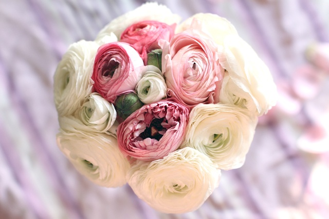 roses-by-claire-bouquet-de-mariee-renoncules-blanches-dessuss-2012