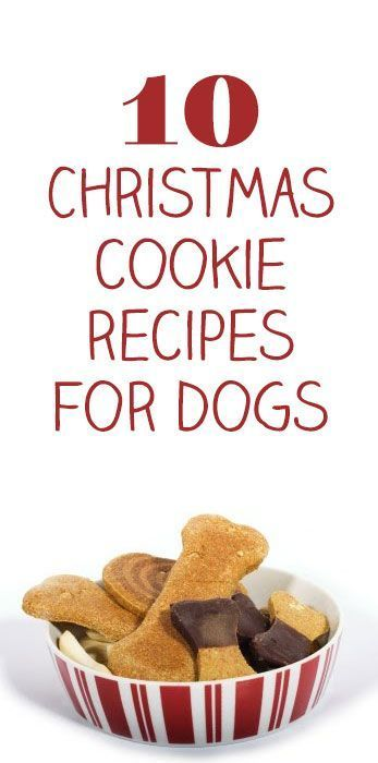 10 Christmas Cookie Recipes for Dogs http://iheartdogs.com/10-christmas-cookie-recipes-for-dogs/ #DogChristmas
