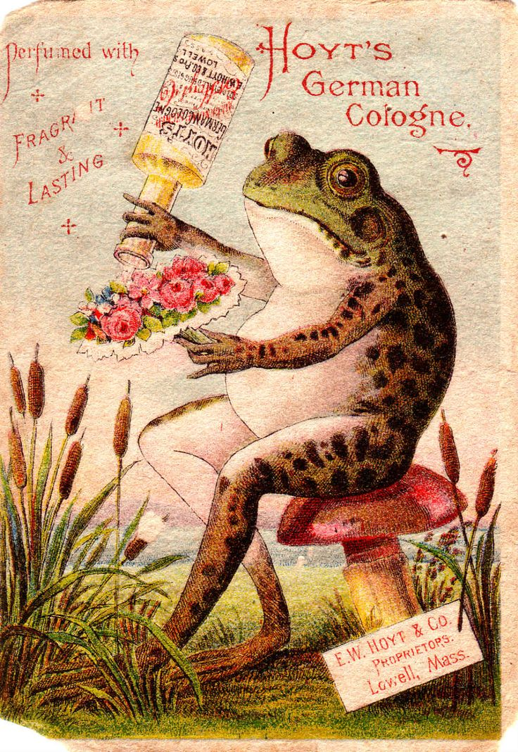 84 Best Victorian Trade Cards Images On Pinterest Frogs Vintage