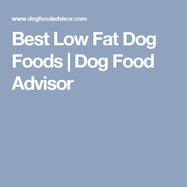Best Low Fat Dog Foods | Dog Food Advisor