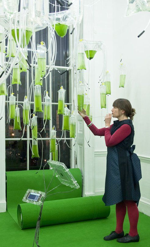 "Tweetable, Interactive Algae Farm is Energy-Generating ""Cyber-Garden"" (Photos) : TreeHugger"