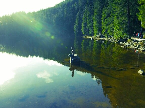#Mummelsee #BlackForest #Lensflares #Mirror #Wideangle #Lumix #7mm #Panasonic #G70