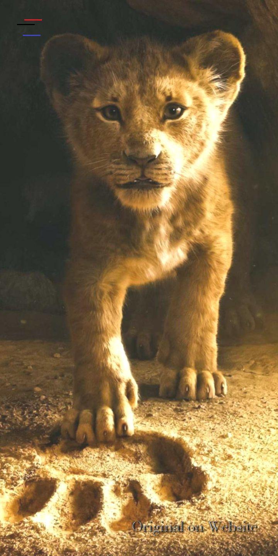 Der Konig Der Lowen Hintergrundbilder Der Konig Der Lowen 2019 Hintergrundbilder Disney Br Lion King Pictures Disney Characters Wallpaper Lion King