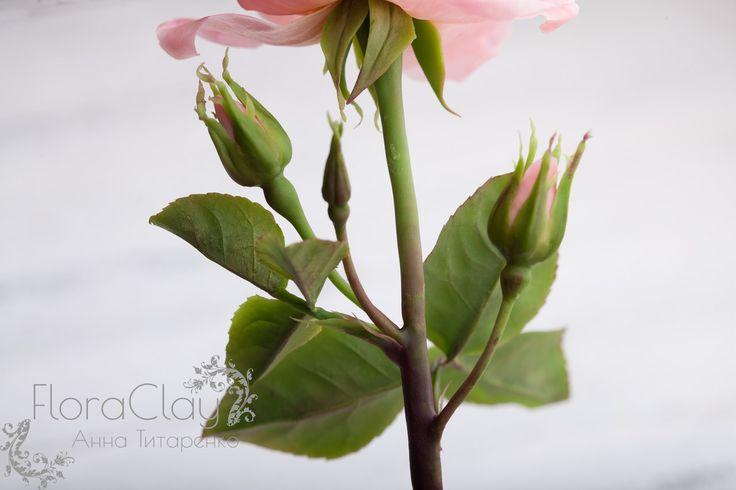 """МК """"Роза кустовая"""". Холодный фарфор"""