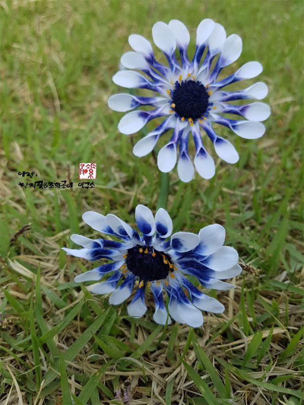 조화공예(아트플라워)  풍차꽃 디모르포세카  Dimorphotheca of artflowers crafted                   http://blog.naver.com/koreapaperart                #조화공예 #종이꽃 #페이퍼플라워 #한지꽃 #아트플라워 #조화 #조화인테리어 #인테리어조화 #인테리어소품 #주문제작 #수강문의 #광고소품 #촬영소품 #디스플레이 #artflowers #koreanpaperarts #hanjiflowers #paperflower #craft #paperarts #handmade #풍차꽃 #디모르포세카 #dimorphotheca