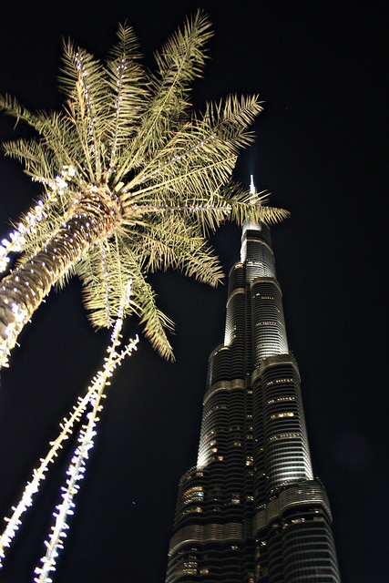 Take a trip to United Arab Emirates-  by halfofvamh, via Flickr