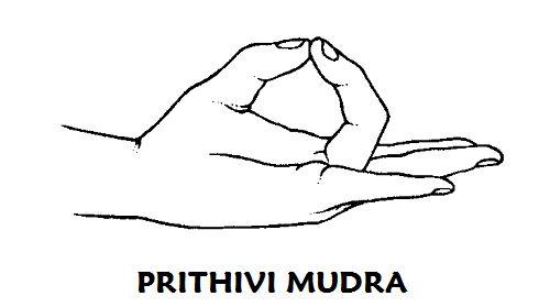 #Prithivi #mudra o mudra de la tierra Según lo necesite o 3 veces al día durante 15 minutos. Puede remediar un déficit de energía en el chakra base. Que uno se sienta fuerte y vital, física o psíquicamente, depende mucho de esta energía. También fortalece el sentido del olfato y es bueno para las uñas, la piel, el pelo y los huesos. Si se siente inseguro al andar, este mudra le devolverá el equilibrio y la confianza.