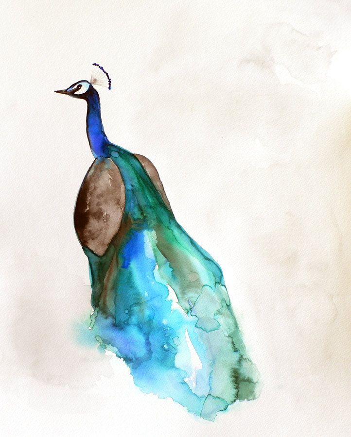 55 best watercolor images on pinterest tattoo ideas for Easy peacock paintings
