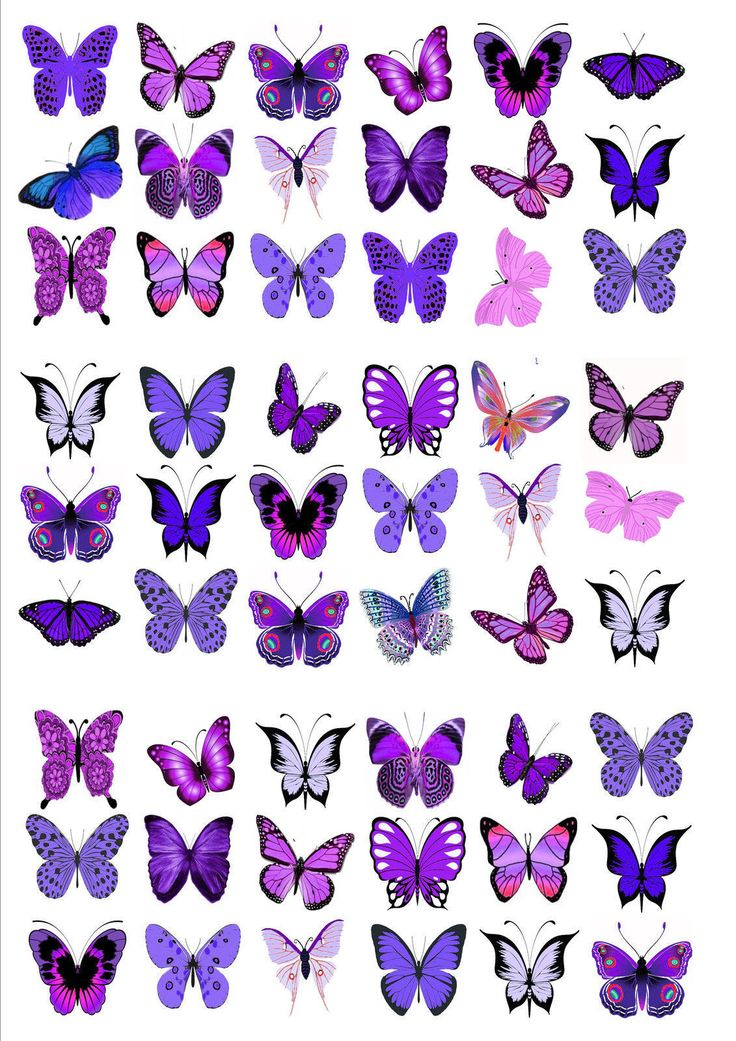 54 x purple violet mix butterflies birthday wedding edible