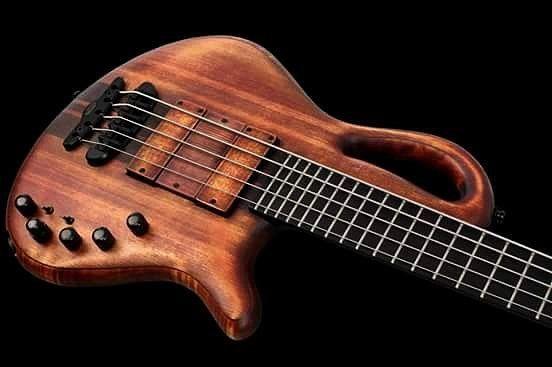 Caledonius 5 Custom By: Mayones Guitars #bass #basses #bassist #bassista #basso #bajo #bajos #bajista #baixos #baixo #baixonatural #bassplayersunited #art #bassplayers #bassplayer #arte #musica #contrabaixo #bx #instabass #musician #bassplayermag #bassuniversity #indobassgram #bassterror #basstheworld #bassgram by bass.terror