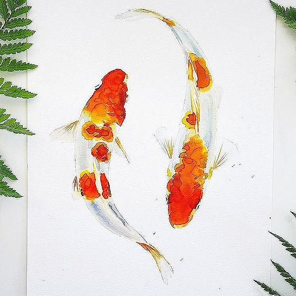 Koi Fish Watercolor Kit In 2020 Koi Fish Drawing Watercolor