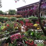 VILLA DE LEYVA , jardin interior Monasterios de los Carmelitas Descalzos